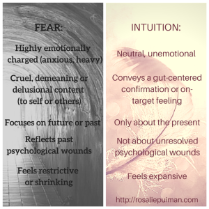 fear vs intuition - Rosalie Puiman